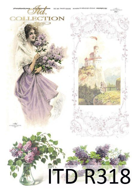 kwiat, kwiaty, kwiaty bzu, bez, zamek, kobieta, dama, suknia, okno, R318