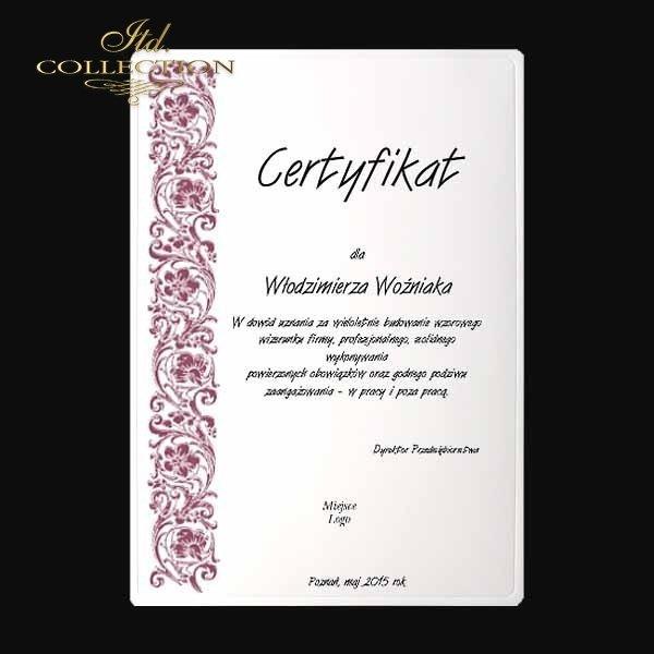 диплом DS0335 универсальный сертификат
