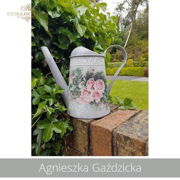 20190516-Agnieszka Gaździcka-R1209-example 04