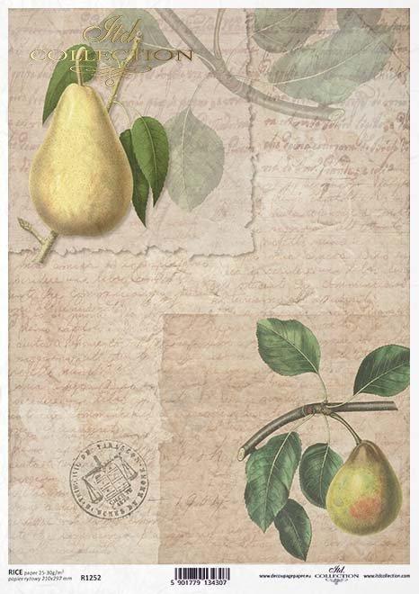 Fruta de decoupage de papel, pera*Бумага декупаж фруктов, груша*Papier decoupage Frucht, Birne