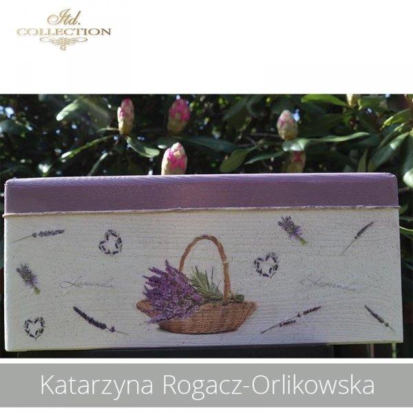 20190505-Katarzyna Rogacz-Orlikowska-R0151-example 04