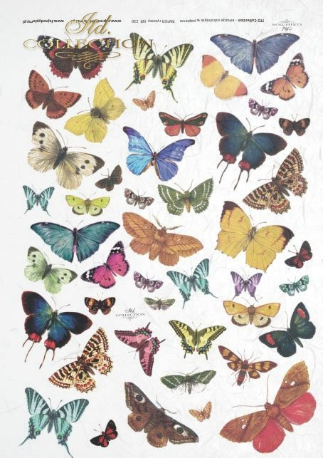 rice-paper-decoupage-insects-butterfly-butterflies-colors-R0230