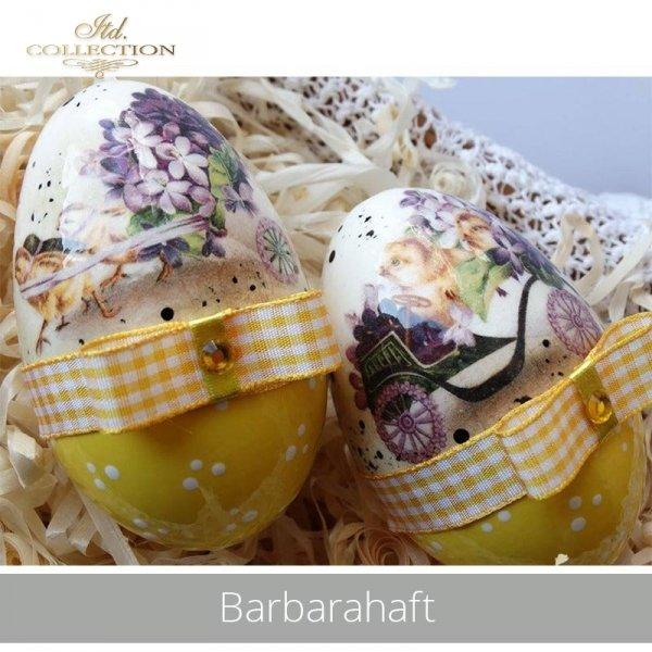 20190430-Barbarahaft-R0827-R0197L-example 03