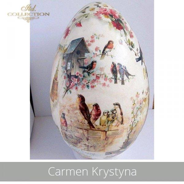 20190427-Carmen Krystyna-R0325-example 01