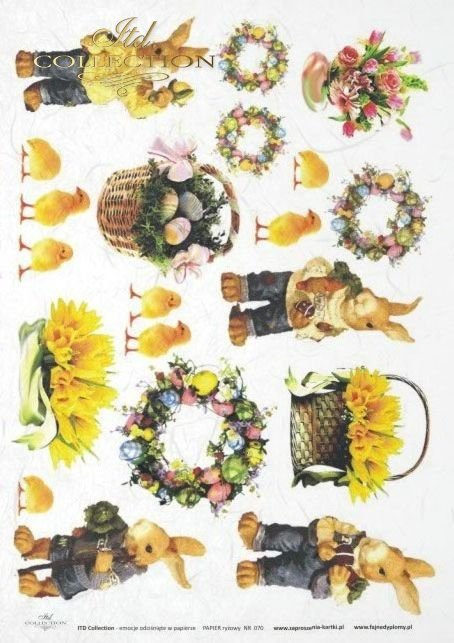 zające, zające, Wielkanoc, kwiat, kwiaty, żonkil, żonkile, jajko, jajka, koszyk, koszyczek, kurczak, kurczaki, R070