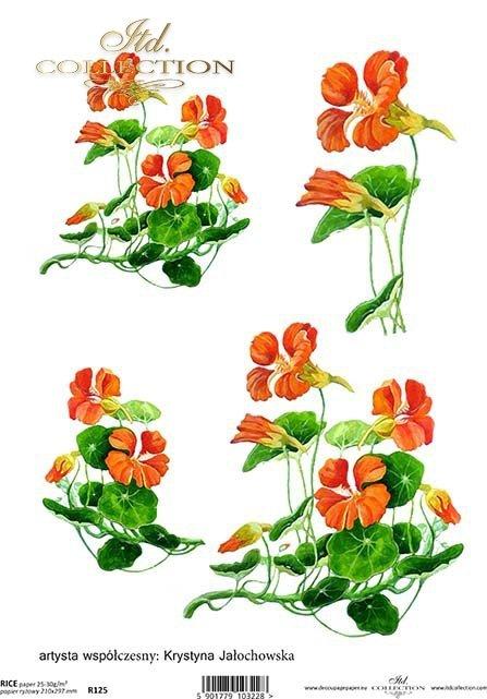 rice-paper-decoupage-nasturtium-flowers-meadow-garden-Krystyna-Jałochowska-R0125
