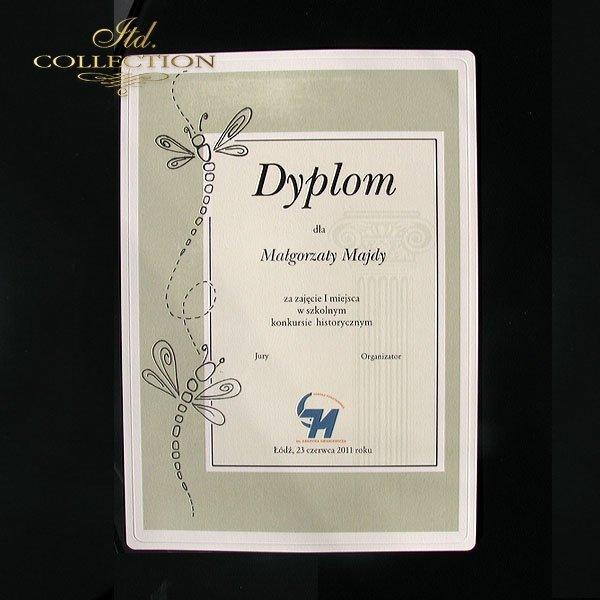 Diploma historical 12