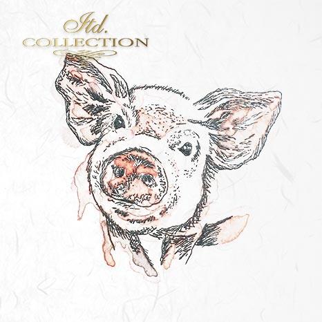 Zestaw papierów ryżowych ITD - RSM003 * zwierzęta: prosiak, świnia, owca, krowa