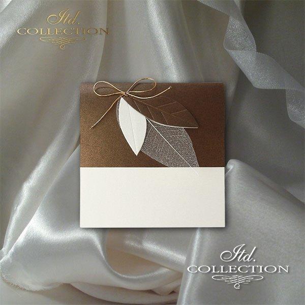 Invitations / Wedding Invitation 2033