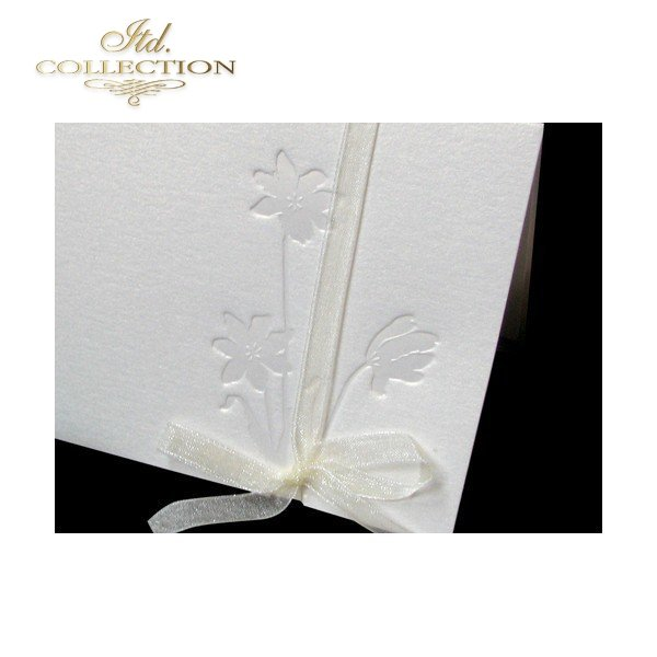 Invitations / Wedding Invitation 1487