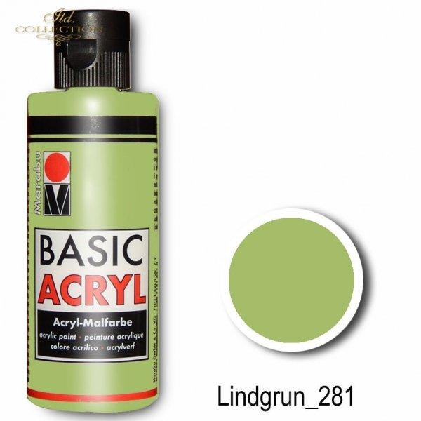 Farba akrylowa Basic Acryl 80 ml Lindgrun 281