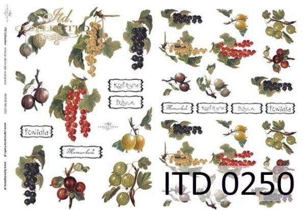 Papier decoupage ITD D0250M