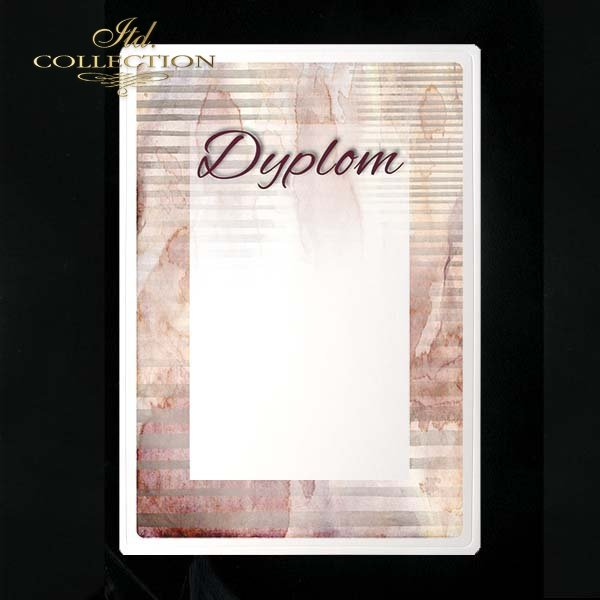 dyplom DS0214