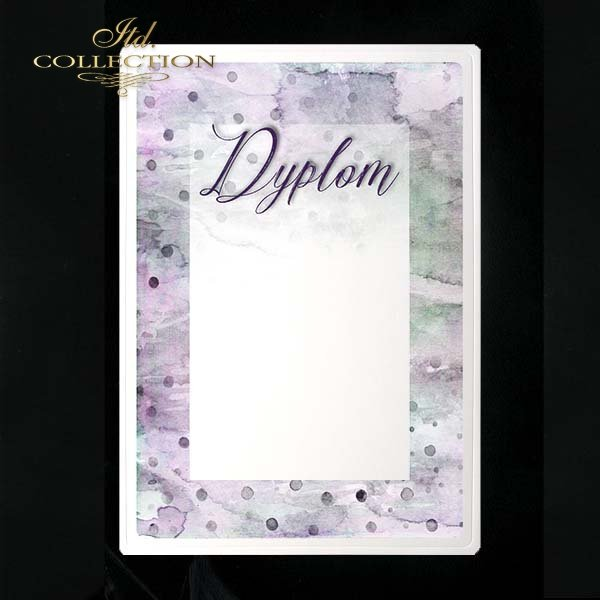 dyplom DS0209