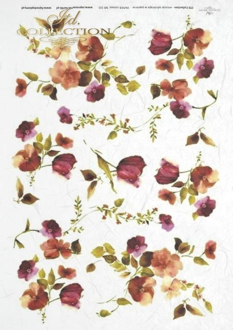 kwiat, kwiaty, kwiatek, kwiatki, ogród, łąka, R0101