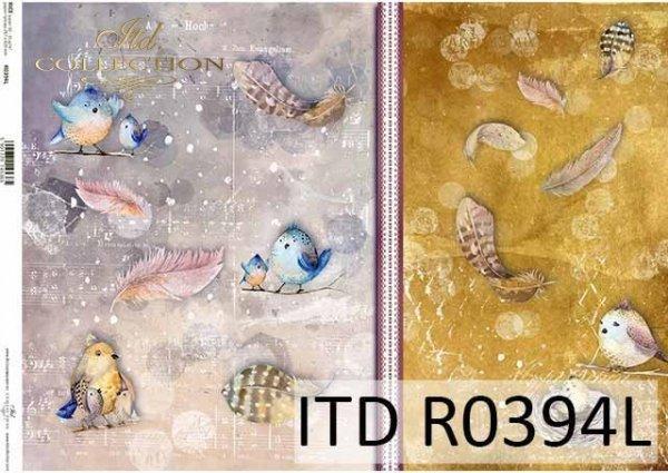 R0394L * wiosna, ptaki, spring, birds, Frühling, Vögel, primavera, pájaros