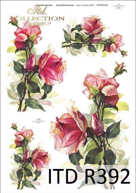 róża, róże, kwiat, kwiaty, kwiatek, kwiatki, bukiet, bukiety, R392