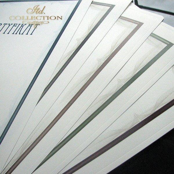 dyplom DS0291 certyfikat
