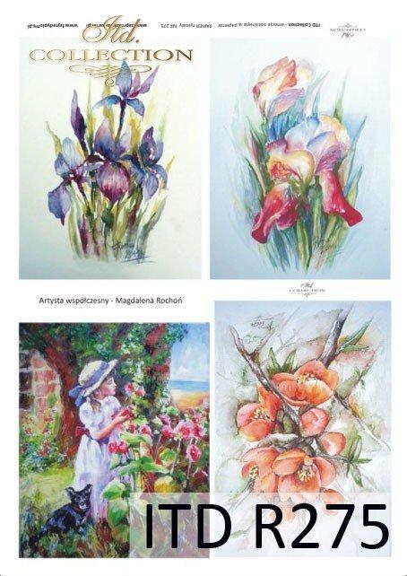 malarstwo współczesne, kwiaty, irysy, Magdalena Rochoń, R275