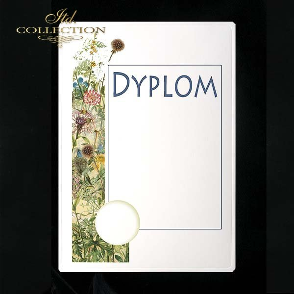 dyplom DS0232