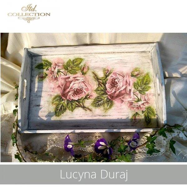 20190520-Lucyna Duraj-R0222-example 01