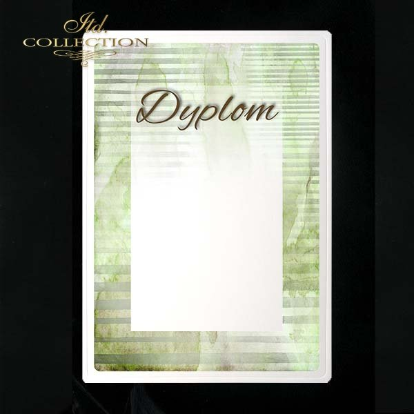 dyplom DS0215
