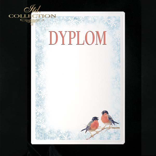 dyplom DS0044