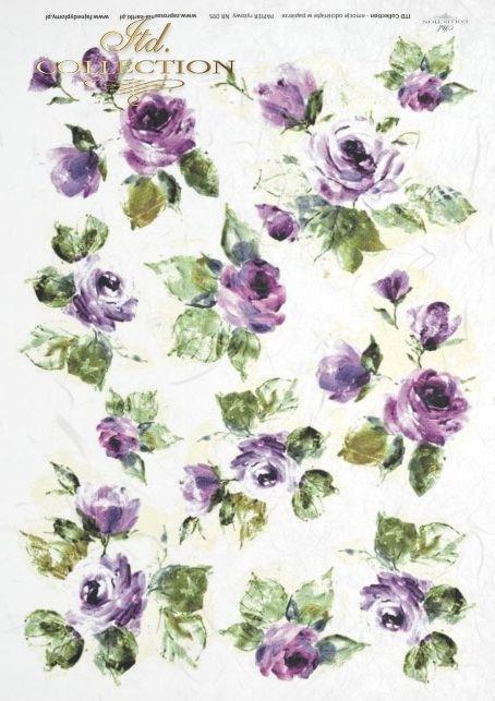 róża, róże, ogród, kwiat, kwiaty, kwiatki, kwiatuszki, R095