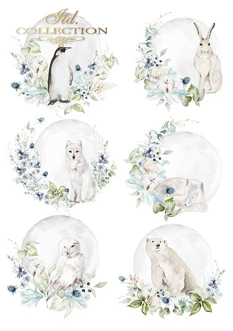 Papiery do scrapbookingu w zestawach - Kraina lodowej porcelany * Set of scrapbooking papers - The land of ice porcelain