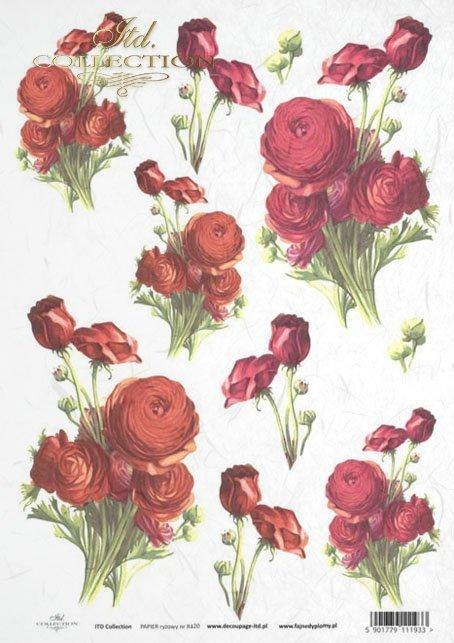 rose, roses, flower, flowers, bouquet, bouquets, R420