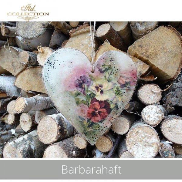 20190529-Barbarahaft-R0164-example 01