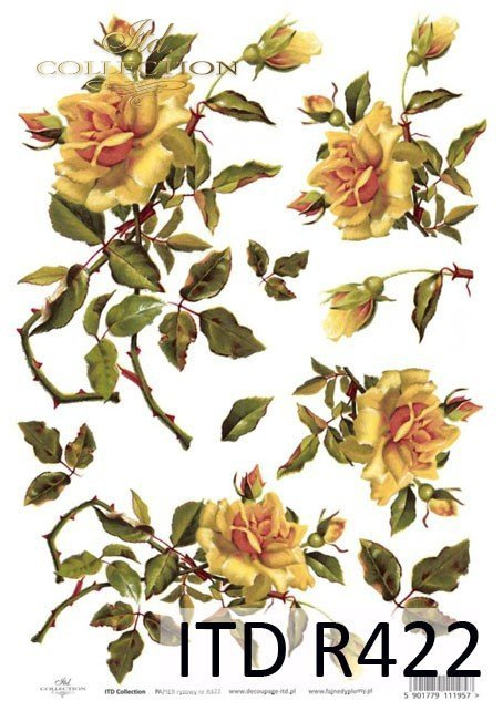 róża, róże, kwiat, kwiaty, kwiatek, kwiatki, bukiet, bukiety, R422
