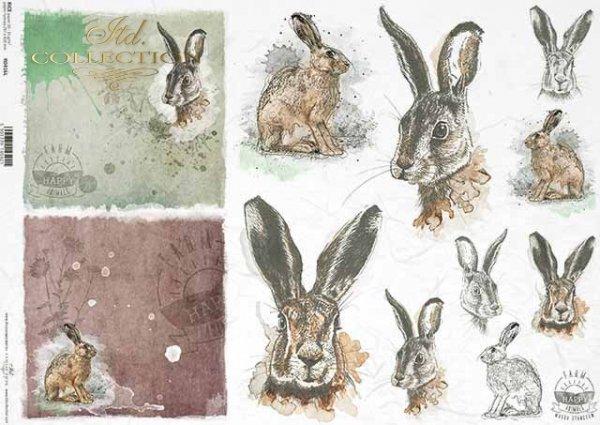 R0416L * króliki, szare zające, głowy zajęcy i królików, napisy 'happy farm'