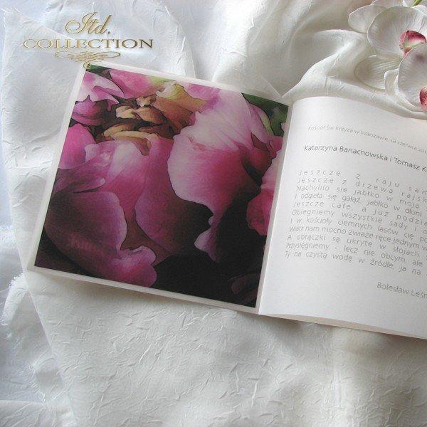 Zaproszenia ślubne / zaproszenie 01726_76_peonia