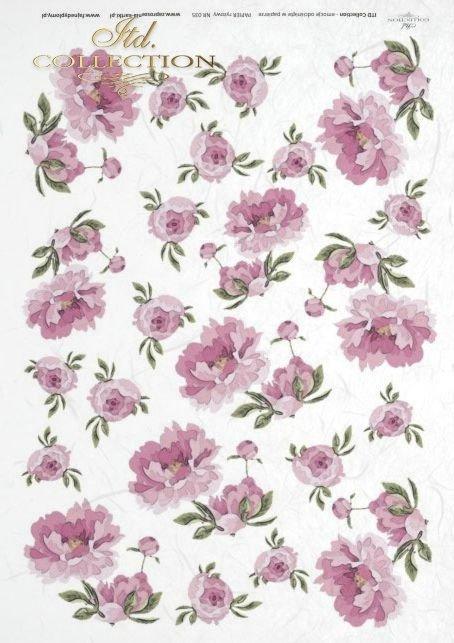 flower, flowers, peony, peonys, kwiat, kwiaty, peonia, peonie, R035