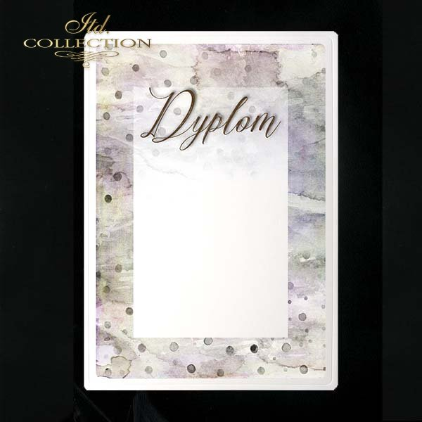 dyplom DS0207