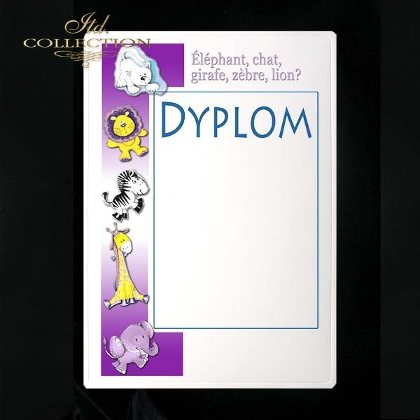 dyplom DS0135