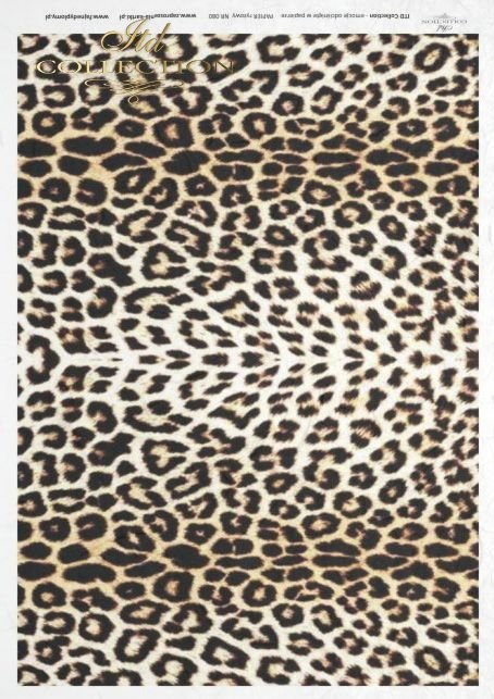 leopard, skin, R080