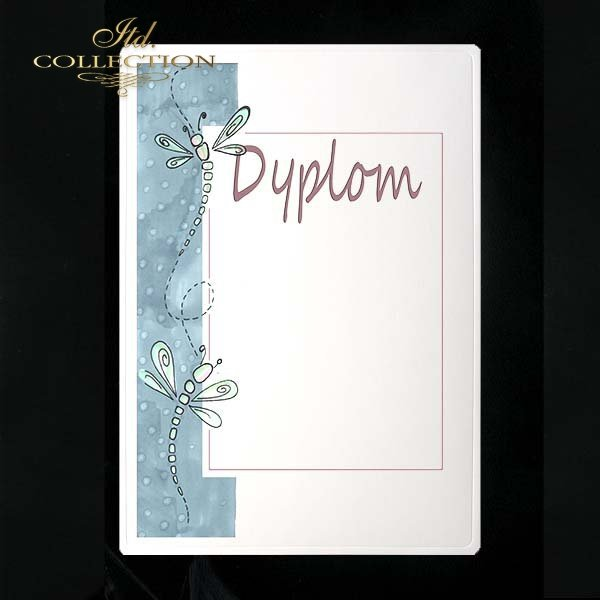 dyplom DS0103