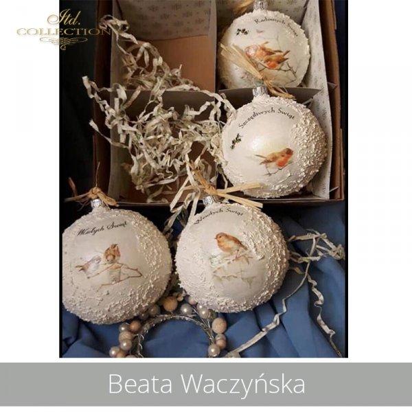 20190430-Beata Waczyńska-R1020-A4-R1021-A4-R0208-example 01