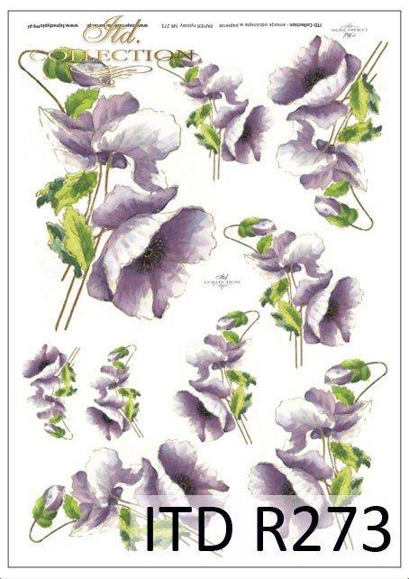 kwiaty, maki, mak, polne kwiaty, polne maki, fioletowe kwiaty, R273