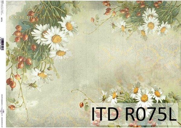 papier ryżowy Rumianki, owoce dzikiej róży*Camomile rice paper, wild rose fruit