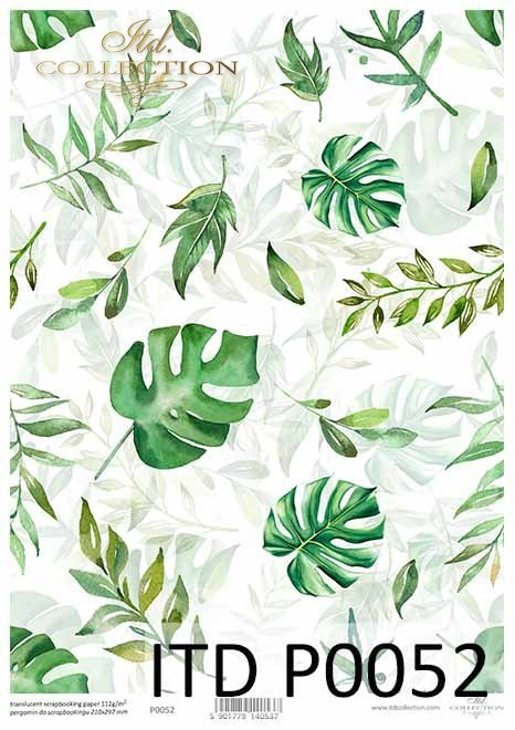 filodendron-monstera-zielone-liście-Pergamin-do-scrapbookingu-P0052-decoupage-paper-with-leaves