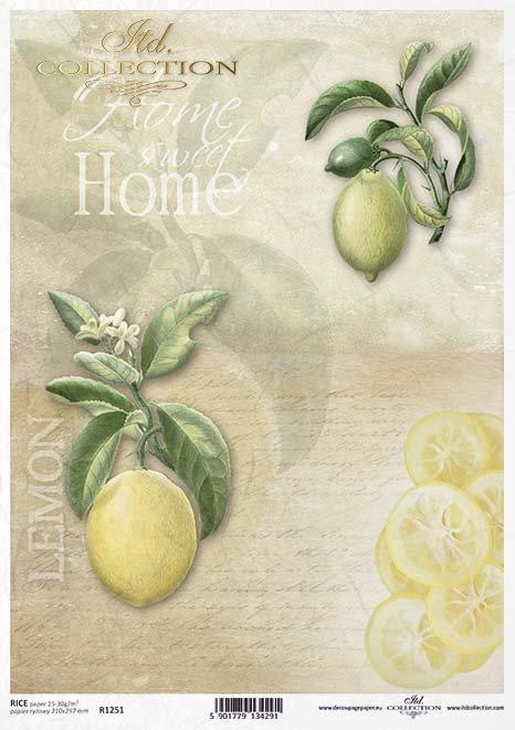 Frutas de decoupage de papel, limones*Фрукты для декупажа бумаги, лимоны*Papier decoupage Früchte, Zitronen