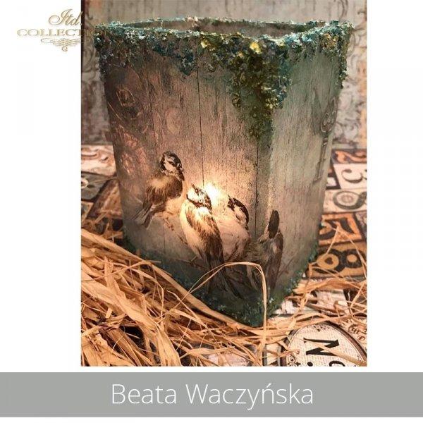 20190430-Beata Waczyńska-R1319-A4-R0175L-example 01
