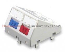 SOLARIX adapter skośny 2mod. 2 x RJ45 z plakietką opisową i klapką