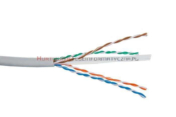 SecurityNET kabel U/UTP kat. 6, drut, PVC szary (305m)