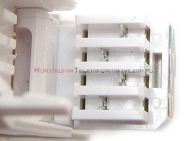Wtyk RJ45 8p8c kat. 5e UTP drut, beznarzędziowy