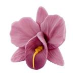 Storczyk kwiat cukrowy na tort 6cm wrzosowy 1szt