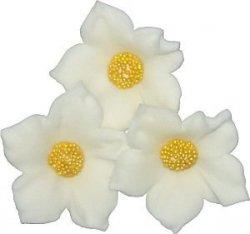 Clematis biały 3 szt. dekoracja cukrowa